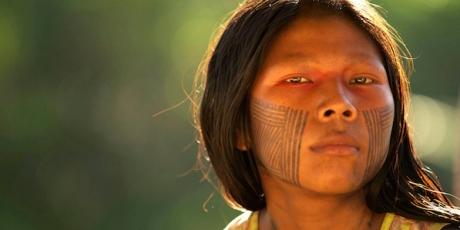 Pétition Amazonie